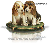 Marcello, REALISTIC ANIMALS, REALISTISCHE TIERE, ANIMALES REALISTICOS, paintings+++++,ITMCEDC1066A,#A# ,dogs,puppies