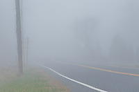 Highway disappearing into a thick fog