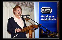 Baroness Fookes DBE - RSPCA, Working in Westminster - House of Lords, Westminster, London - 4th November 2003