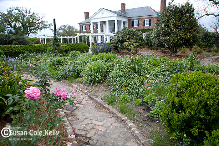Heirloom gardens at The Plantation House at Boone Hall Plantation, Mt. Pleasant, SC