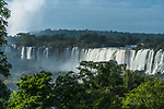 Tropical rainforest in Iguazu Falls National Park in Argentina.  Above the trees from left to right are the Salto Esccondido or Hidden Waterfalll and the San Martin Falls.  A UNESCO World Heritage Site.
