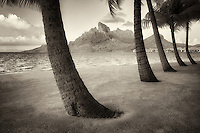 Sandy beach with palm trees and Mt. Otemanu. Bora Bora. French Polynesia.