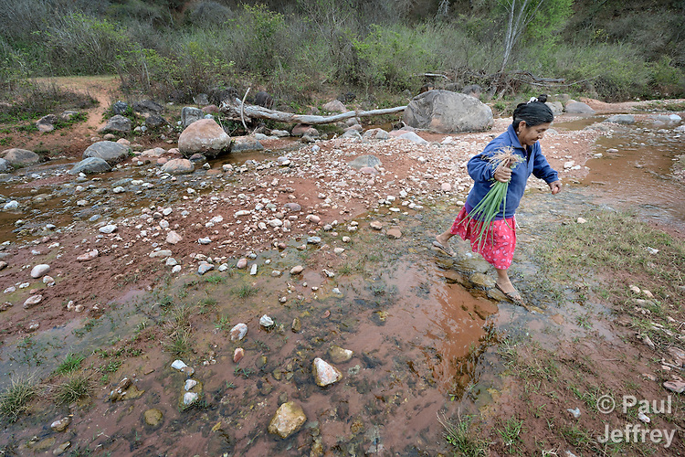 Edulia Vaquera, a Guarani indigenous woman in the village of Kapiguasuti, Bolivia, crosses a stream after harvesting food from her garden. She and her neighbors started small gardens with assistance from Church World Service, supplementing their corn-based diet with nutritious vegetables and fruits.
