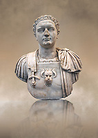 Roman marble sculpture bust of Emperor Domitian  81-96 AD, inv 6061 Farnese Collection , Naples Museum of Archaeology, Italy
