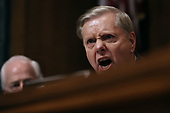 WASHINGTON, DC - SEPTEMBER 27:  Senate Judiciary Committee member Sen. Lindsey Graham (R-SC) shouts while questioning Judge Brett Kavanaugh during his Supreme Court confirmation hearing in the Dirksen Senate Office Building on Capitol Hill September 27, 2018 in Washington, DC. Kavanaugh was called back to testify about claims by Christine Blasey Ford, who has accused him of sexually assaulting her during a party in 1982 when they were high school students in suburban Maryland.  (Photo by Win McNamee/Getty Images)