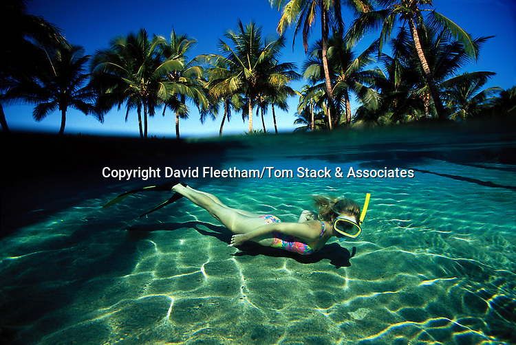 A snorkeler dives down to the sand bottom off a Maui beach with palm trees. Hawaii. This is NOT a digital composite