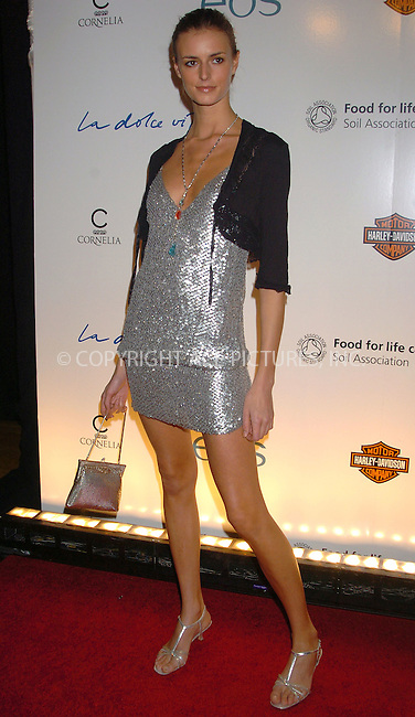 WWW.ACEPIXS.COM . . . . .....November 3 2005, New York City....Jacquette Wheeler at 'La Dolce Vita' New York Fundraiser at the Metropolitain Pavilion, which was hosted by Sting and Trudie Styler.....Please byline: AJ Sokalner - ACE PICTURES..... *** ***..Ace Pictures, Inc:  ..Philip Vaughan (212) 243-8787 or (646) 769 0430..e-mail: info@acepixs.com..web: http://www.acepixs.com