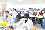 DNA Forensic scientists at Orchid Cellmark in Dallas, Texas.