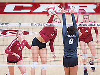 STANFORD, CA - November 3, 2018: Holly Campbell, Kate Formico, Meghan McClure at Maples Pavilion. No. 1 Stanford Cardinal defeated No. 15 Colorado Buffaloes 3-2.