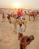 INDIA, Rajasthan, tourists enjoying camel ride, Pushkar Camel Fair