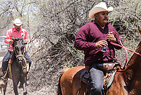 Cabalgata por Quiriego. (Foto: Marisol Soto/NortePhoto)<br /> <br /> <br /> IV Festival Maria Bonita en Quiriego, Sonora.