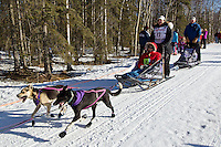 Jessie Royer and team run past spectators on the bike/ski trail during the Anchorage ceremonial start during the 2014 Iditarod race.<br /> Photo by Britt Coon/IditarodPhotos.com