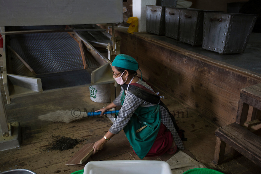 India – West Bengal: A worker cleaning up tea residues at the processing factory at Makaibari Tea Estates, in the Darjeeling region. Here, leaves are fermented, dried and packed. Tea industry was first introduced in West Bengal during colonialism by the British, which kept on managing most of the tea estates until the 60s.