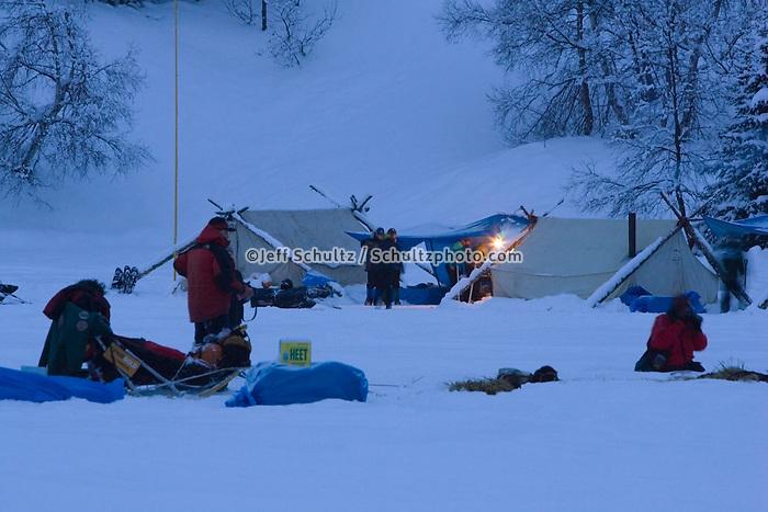 Lance Mackey rests his sled dog team in evening @ Finger Lake Chkpt 2006 Iditarod Sled Dog Race AK