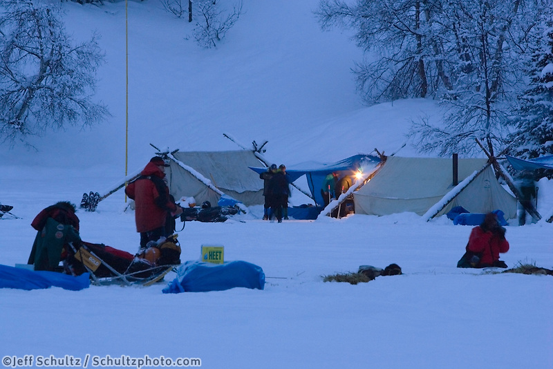 Lance Mackey rests his sled dog team in evening @ Finger Lake Chkpt 2006 Iditarod Sled Dog Race AK