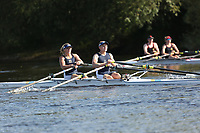 Race: 164  Mx.IM2.2x   Winner of Race: 128  vs [196]Evesham RC - EVE-Taylor <br /> <br /> Ross Regatta 2017 - Monday<br /> <br /> To purchase this photo, or to see pricing information for Prints and Downloads, click the blue 'Add to Cart' button at the top-right of the page.