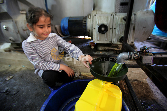 A Palestinian girl pours newly-made olive oil into a plastic container at an olive press in the West bank city of Nablus October 16, 2016. Photo by Nedal Eshtayah