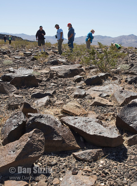 Students and faculty from San Jose State University, in the Greenwater Range on the eastern edge of Death Valley National Park, California