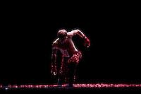 Dress rehearsal of Les Ballets de Monte Carlo's performance of the ballet 'Le Spectre de la Rose' by Marco Goecke, Grimaldi Forum, Monaco, 30 December 2009