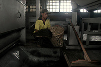 A worker gathers machine dried tea leaves at a tea factory in Darjeeling