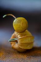 Gastronomie Générale / Diététique / Physialis bio : lanterne japonaise, amour en cage… Les surnoms donnés au physalis sont aussi nombreux que ses variétés. Ce fruit originaire des Andes appartient à la même famille que la tomate et l'aubergine // General Gastronomy / Diet / Organic Physialis: Japanese lantern, love in a cage… The nicknames given to physalis are as numerous as their varieties. This fruit from the Andes belongs to the same family as the tomato and the eggplant