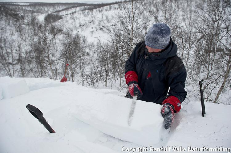 Mann skjærer snøblokk for å dekke taket på kantgrop. ---- Man cuting snow blocks.