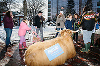 Pam Keniston-Bundy, of Loudon, NH, brought a Scottish Highlander wearing a campaign sign for Democratic presidential candidate Bernie Sanders outside the Radisson Hotel in downtown Manchester, New Hampshire, on Tues., Feb. 9, 2016. The hotel is where most television and radio news organizations set up to broadcast coverage of the primary.
