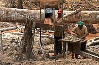 """No meio da mata garimpeiros continuam a cavar em busca de ouro na grota Rica. Milhares de garimpeiros se encontram espalhados pela regi""""o do Garimpo em busca de novas jazidas. O garimpo descoberto em Novo Aripuan"""", no sul do Amazonas no igarapÈ da Preciosa, um afluente do rio Juma (a 70 km da cidade de ApuÌ) vai crescendo com dezenas de buracos abertos sob a selva.<br /> Novo Aripuan"""", Amazonas, Brasil<br /> Foto Paulo Santos / Acervo H"""
