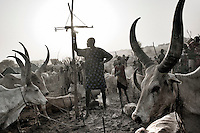 South Sudan. 24 March 2011...A guardian, with its Kalashnikov, hanged up within his reach, watches over his herd in a cattle camp of the Dinka people.