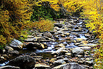 River flowing through the autumn colored trees in Smoky Mountain National Park, Tennessee