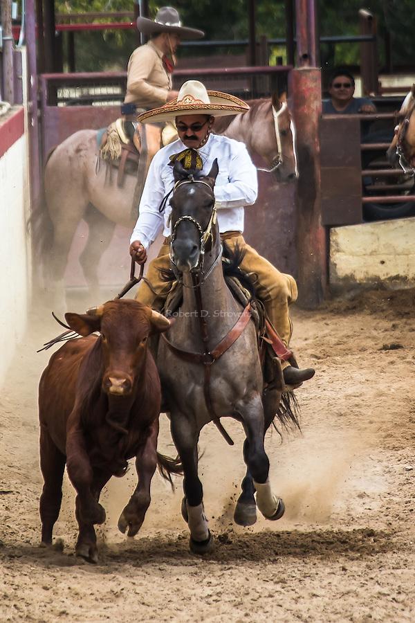 Charreada - San Antonio