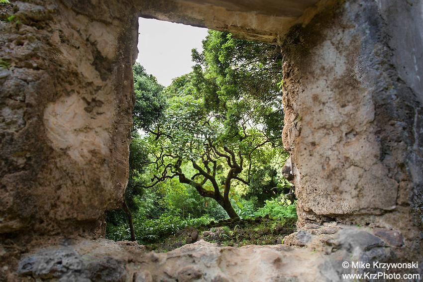 Kaniakapupu Ruins aka King Kamehameha III Summer Home, Nu'uanu Valley, Oahu