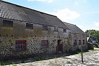 2020 02 12 Trecadwgan Farm in Solva, Wales, UK.
