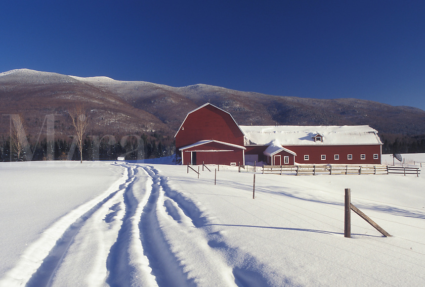 Vermont, VT, Tire tracks in the deep snow lead down to a snow-covered red barn in Waterbury Center in winter.