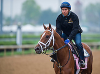 Princess of Sylmar, trained by Todd Pletcher, works out in preparation for the Kentucky Oaks at Churchill Downs on April 29, 2013.