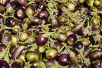Fresh eggplants, aubergine, on sale in old town market Udaipur, Rajasthan, Western India,