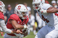 Stanford Football vs Spring Football Game, April 13, 2019