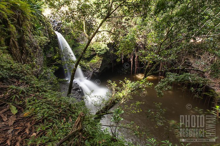 Waterfall along the Pipiwai hiking trail, Haleakala National Park, Kipahulu, Maui