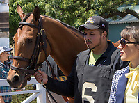 ARCADIA, CA. MAY 27: #6 Lady Eli heads into the saddling barn before the Gamely Stakes (Grade l) on May 27, 2017 at Santa Anita Park in Arcadia, CA (Photo by Casey Phillips/Eclipse Sportswire/Getty Images)