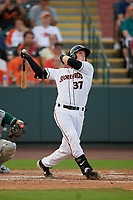 Delmarva Shorebirds Adley Rutschman (37) at bat during a South Atlantic League game against the Greensboro Grasshoppers on August 21, 2019 at Arthur W. Perdue Stadium in Salisbury, Maryland.  Delmarva defeated Greensboro 1-0.  (Mike Janes/Four Seam Images)