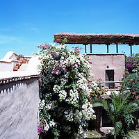 A profusion of purple and while bougainvillea on the wall of one of the courtyards