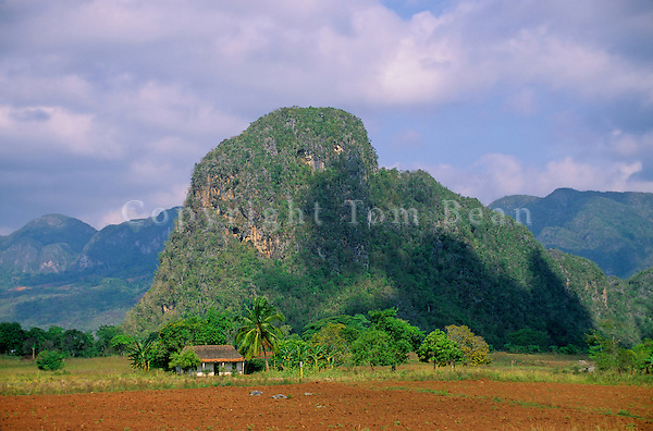 Limestone hill, a Magote, in the karst topography valley at Vinales, Pinar Del Rio, Cuba, AGPix_0115.