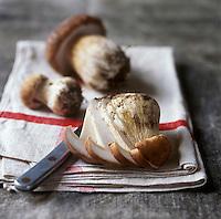 Gastronomie Générale: Cèpe de Bordeaux - Stylisme : Valérie LHOMME