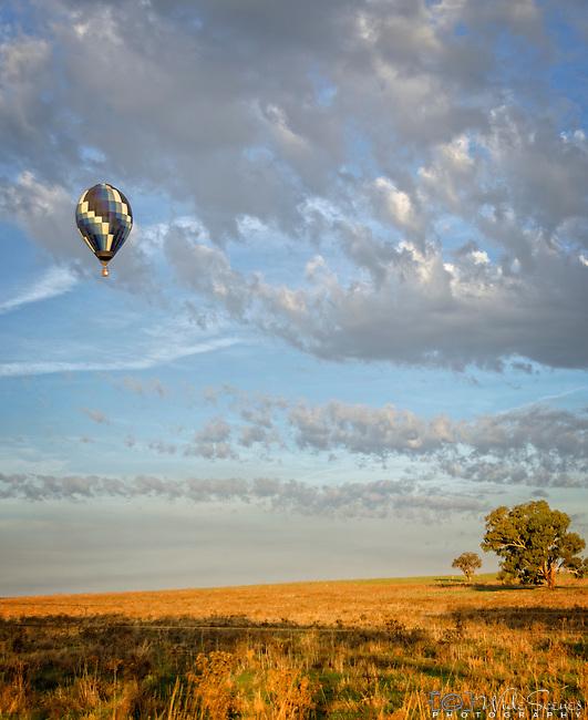 Hot Air Balloon at the Canowindra Balloon Challenge in NSW Australia.