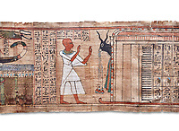 Ancinet Egyptian Book of the Dead papyrus - Aaner Book of the Dead, Thebes - 21st Dynasty (1076-943C).Turin Egyptian Museum. white background<br /> <br /> During the 21st Dynasty the number of spells in Books of the Dead was often reduced in favour of decrative panels. small illustrated vignettes take up a large part of the papytus surface