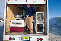 Alaska Airlines dog squad member Dave Nielsen of Seattle closes the door on a load of dogs in a van for transport to the Nome during the 2010 Iditarod