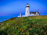 Lincoln County, ME: Pemaquid Point Lighthouse (1835) at dawn