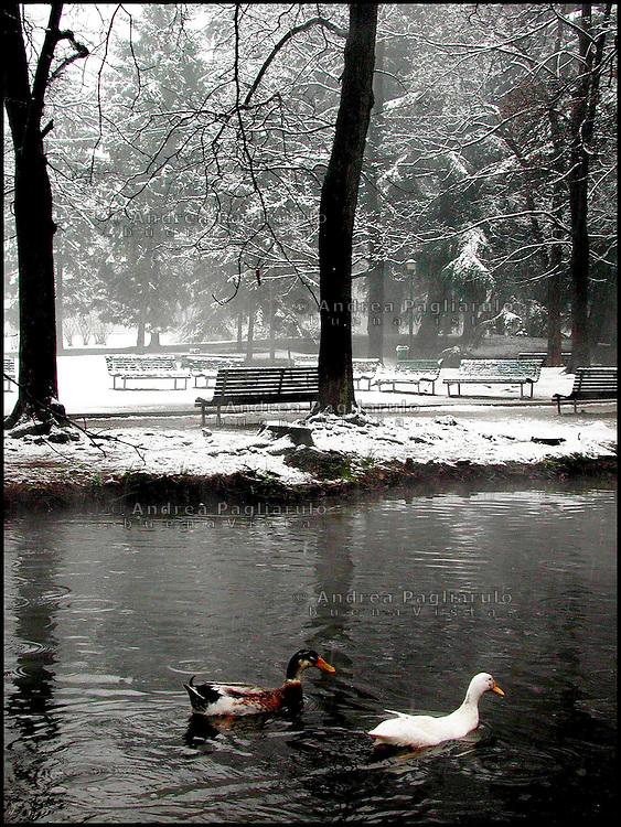 Italia, Milano, parco Sempione in inverno. ###### Italy, Milan, Sempione park in winter..© Andrea Pagliarulo