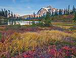 Mount Baker-Snoqualmie National Forest, Washington<br /> Mt Shuksan reflecting on Picture Lake in evening light