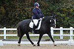 Class 6. Elementary 59. British Dressage. Brook Farm training centre. Essex. 29/09/2017. MANDATORY Credit Garry Bowden/Sportinpictures - NO UNAUTHORISED USE - 07837 394578
